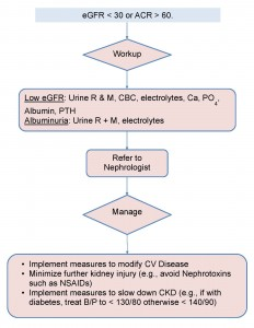 Thumbnail image of CCO ORN Kidney Wise Algorithm.